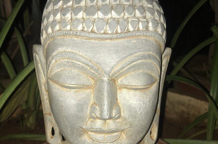 రమణీయం- విపశ్యన -బుద్ధుని జీవితం-ధర్మం-1