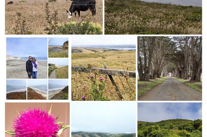 Upaasana- Nature Photography Day!